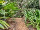 9335 Frangipani Drive - Photo 29
