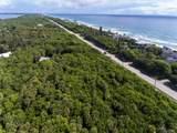 101 Seagrape Road - Photo 8