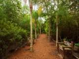 700 Lake Orchid Circle - Photo 29