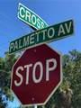 1053 Palmetto Avenue - Photo 28
