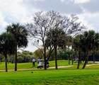 1001 Royal Palm Blvd - Photo 31