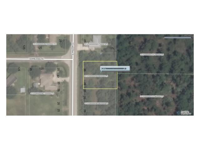 121 S Willow Street, Fellsmere, FL 32948 (MLS #198933) :: Billero & Billero Properties