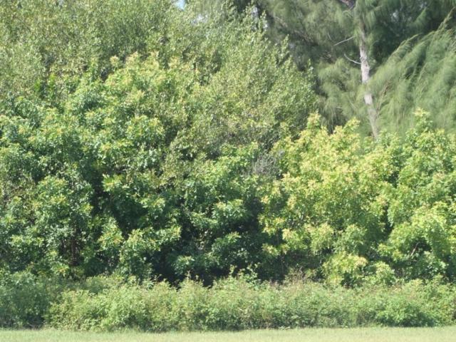 0 S. Ocean Drive, Fort Pierce, FL 34949 (MLS #203912) :: Billero & Billero Properties