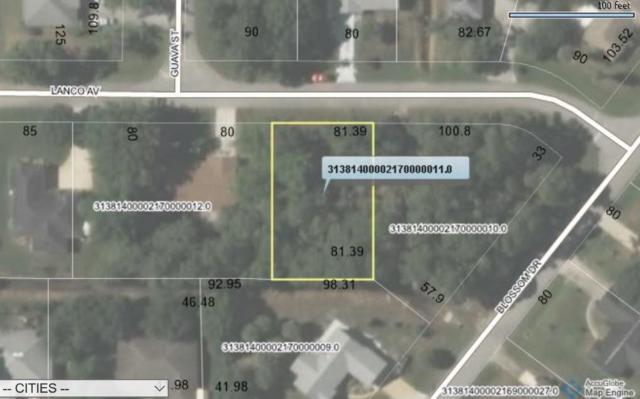 911 Lanco Avenue, Sebastian, FL 32958 (MLS #206815) :: Billero & Billero Properties