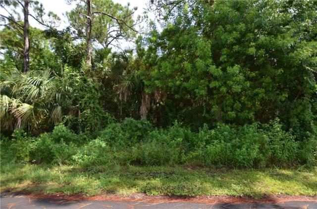 1564 Glentry Lane, Sebastian, FL 32958 (MLS #210301) :: Billero & Billero Properties