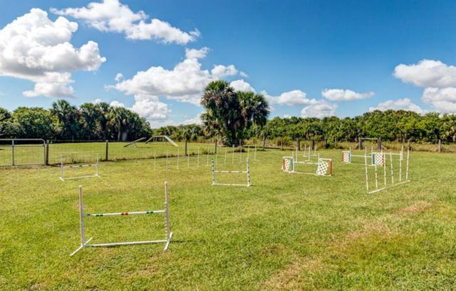 3326 Sage Avenue SW, Palm Bay, FL 32908 (MLS #210303) :: Billero & Billero Properties