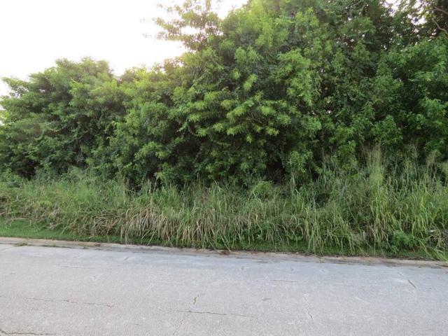 1805 18th Avenue SW, Vero Beach, FL 32962 (MLS #210354) :: Billero & Billero Properties