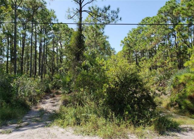 0 Tree Top Trail, Fort Pierce, FL 34951 (MLS #210819) :: Billero & Billero Properties