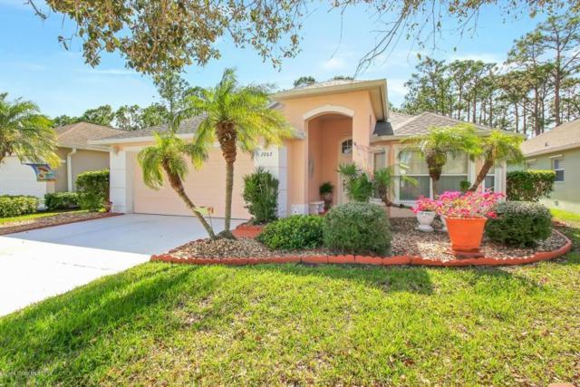 2203 Chinaberry Circle, Palm Bay, FL 32909 (MLS #219828) :: Billero & Billero Properties