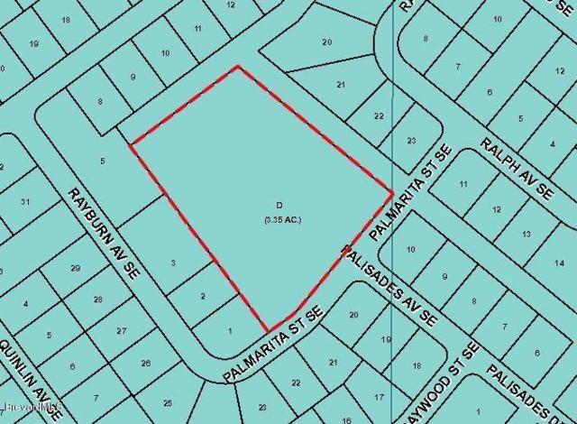 XXX Palmarita Street SE, Palm Bay, FL 32909 (MLS #219942) :: Billero & Billero Properties