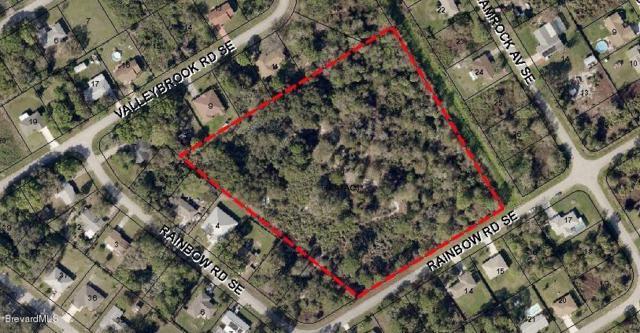 XXX Rainbow Road SE, Palm Bay, FL 32909 (MLS #219944) :: Billero & Billero Properties