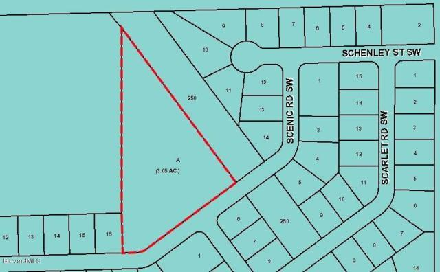 XXX Scenic Road SW, Palm Bay, FL 32908 (MLS #219948) :: Billero & Billero Properties