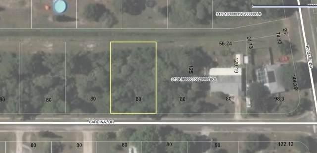129 Cardinal Drive, Sebastian, FL 32958 (MLS #226416) :: Billero & Billero Properties