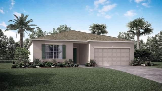 357 Breakwater Terrace, Sebastian, FL 32958 (#229162) :: The Reynolds Team/ONE Sotheby's International Realty