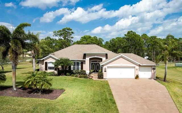 4500 Celestial Drive, Grant Valkaria, FL 32949 (MLS #230787) :: Team Provancher | Dale Sorensen Real Estate