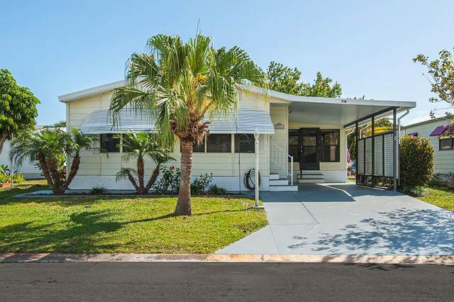 714 Amaryllis Drive, Sebastian, FL 32976 (MLS #231009) :: Team Provancher | Dale Sorensen Real Estate