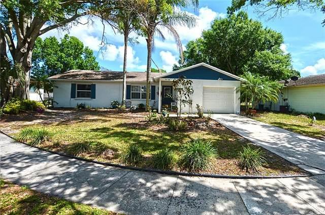 556 21st Avenue, Vero Beach, FL 32962 (MLS #231081) :: Team Provancher   Dale Sorensen Real Estate