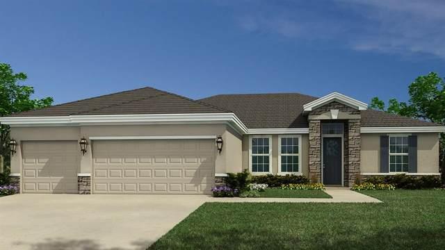 6763 Rumine Circle, Vero Beach, FL 32967 (MLS #231679) :: Team Provancher | Dale Sorensen Real Estate
