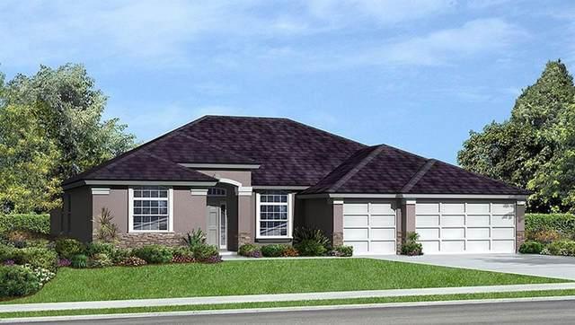 5585 W 1st, Vero Beach, FL 32968 (MLS #232372) :: Billero & Billero Properties