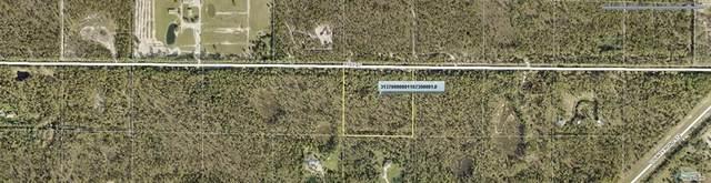0 91st Street, Fellsmere, FL 32948 (MLS #234003) :: Billero & Billero Properties