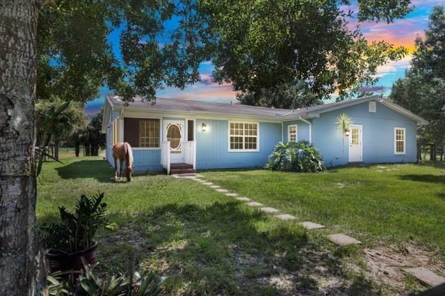 14475 97th Street, Fellsmere, FL 32948 (MLS #234874) :: Billero & Billero Properties