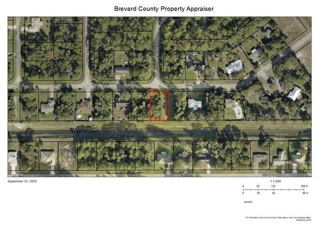 786 Gerlitz Road SW, Palm Bay, FL 32908 (MLS #235883) :: Billero & Billero Properties
