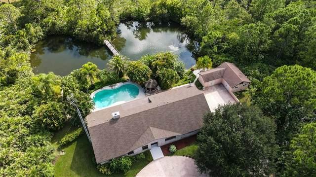 13675 79th Street, Fellsmere, FL 32948 (MLS #236524) :: Team Provancher | Dale Sorensen Real Estate