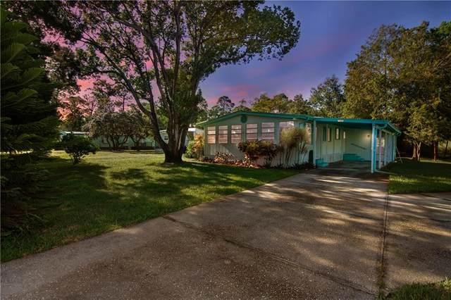 7985 126th Street, Sebastian, FL 32958 (MLS #237208) :: Team Provancher | Dale Sorensen Real Estate