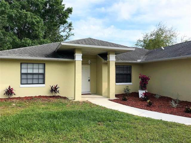 817 Wentworth Street, Sebastian, FL 32958 (MLS #238796) :: Billero & Billero Properties