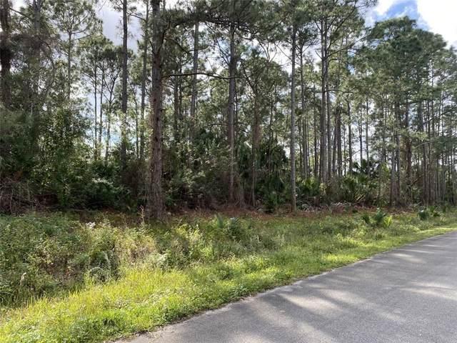 1586 Degamma Street, Palm Bay, FL 32907 (MLS #239840) :: Team Provancher | Dale Sorensen Real Estate