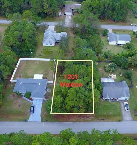 1201 Weldon Street, Palm Bay, FL 32909 (MLS #239918) :: Team Provancher | Dale Sorensen Real Estate