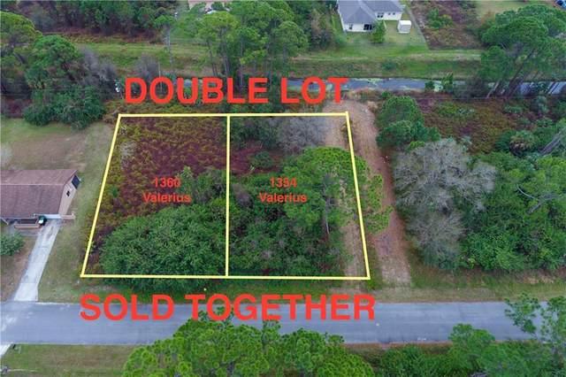 1360 Valerius Street, Palm Bay, FL 32909 (MLS #239920) :: Team Provancher | Dale Sorensen Real Estate