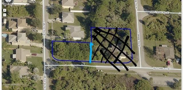 TBD Carlyle Avenue SE, Palm Bay, FL 32909 (MLS #239997) :: Team Provancher | Dale Sorensen Real Estate