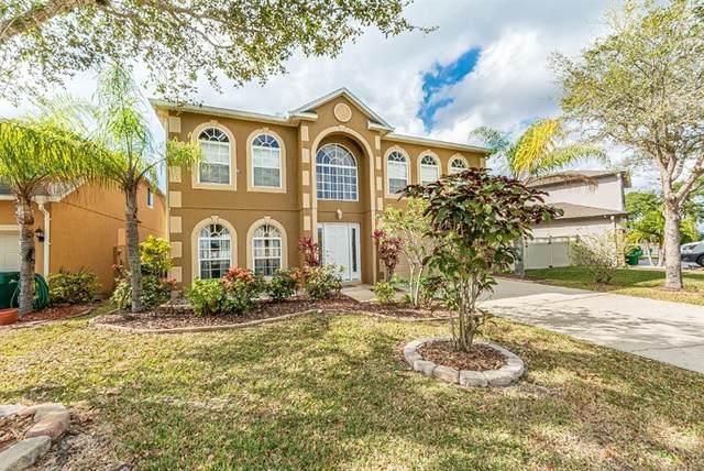 3635 Burdock Avenue, West Melbourne, FL 32904 (MLS #240078) :: Team Provancher | Dale Sorensen Real Estate