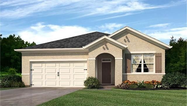 2764 Hanover Street SW, Vero Beach, FL 32968 (MLS #241063) :: Dale Sorensen Real Estate