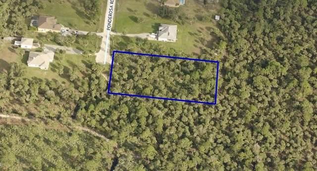 4145 Ponderosa Road, Grant Valkaria, FL 32950 (MLS #241347) :: Billero & Billero Properties
