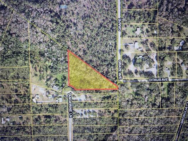 TBD Tangerine Ln, Okeechobee, FL 34972 (MLS #241424) :: Team Provancher | Dale Sorensen Real Estate