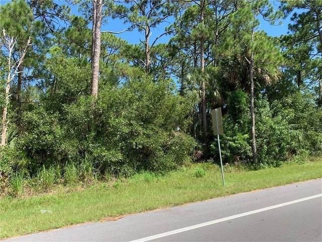 1185 Brook Street, Palm Bay, FL 32905 (MLS #242511) :: Team Provancher | Dale Sorensen Real Estate