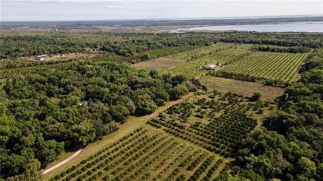 6401 Dixie Way, Mims, FL 32754 (MLS #242730) :: Team Provancher | Dale Sorensen Real Estate