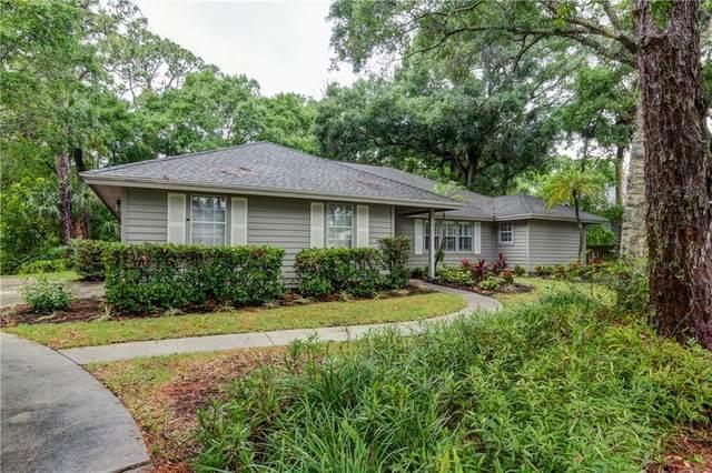 435 61st Avenue, Vero Beach, FL 32968 (MLS #242944) :: Team Provancher | Dale Sorensen Real Estate