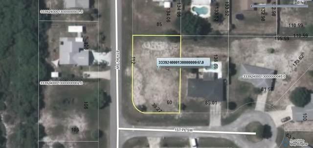 780 1st Place SW, Vero Beach, FL 32962 (MLS #243374) :: Team Provancher | Dale Sorensen Real Estate