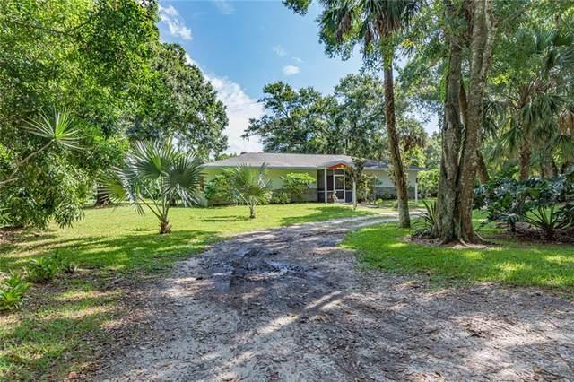 100 S Broadway Street, Fellsmere, FL 32948 (MLS #245008) :: Team Provancher | Dale Sorensen Real Estate