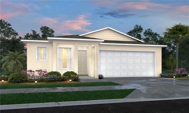 7202 Deer Park Avenue, Fort Pierce, FL 34951 (MLS #245411) :: Team Provancher | Dale Sorensen Real Estate