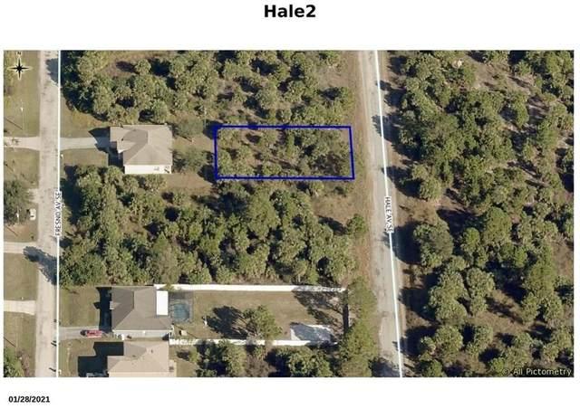 3260 Hale Avenue SE, Palm Bay, FL 32909 (MLS #245600) :: Kelly Fischer Team