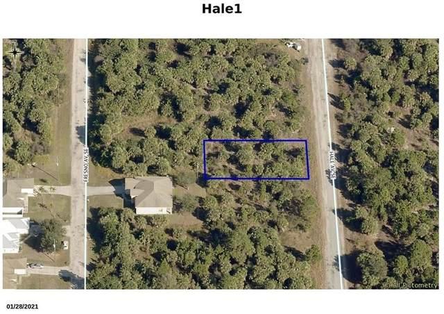 3250 Hale Avenue SE, Palm Bay, FL 32909 (MLS #245605) :: Kelly Fischer Team