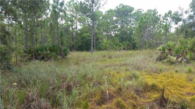 13820 85th Street, Fellsmere, FL 32948 (MLS #207902) :: Billero & Billero Properties