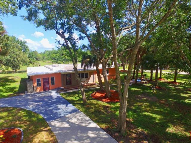 13680 101st Street, Fellsmere, FL 32948 (MLS #210476) :: Billero & Billero Properties
