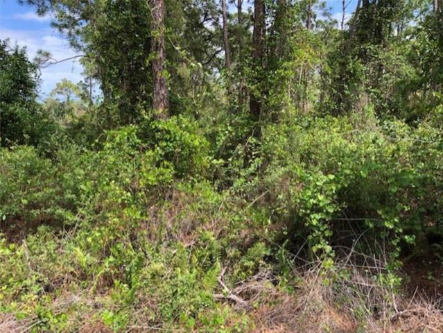 0 Slash Pine Trail, Fort Pierce, FL 34951 (MLS #219226) :: Billero & Billero Properties