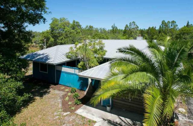 4460 Gumbo Limbo Lane, Grant Valkaria, FL 32949 (MLS #219844) :: Billero & Billero Properties