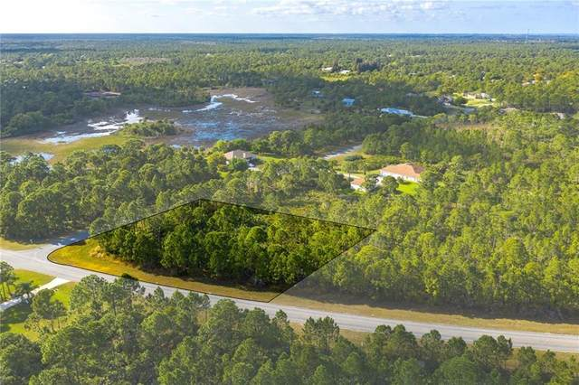 7009 Hacienda Drive, Grant Valkaria, FL 32949 (MLS #231204) :: Billero & Billero Properties